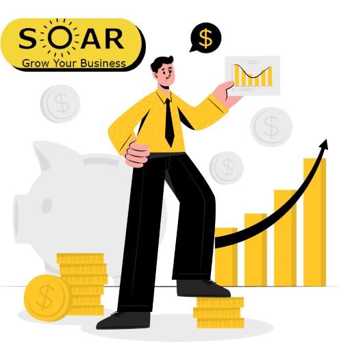S.O.A.R. The Business Bounce Back Coaching module